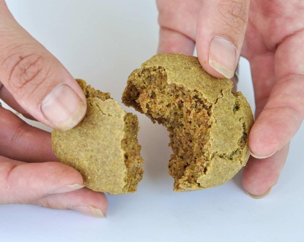 Pistachio Muffins (Vegan + Gluten Free)