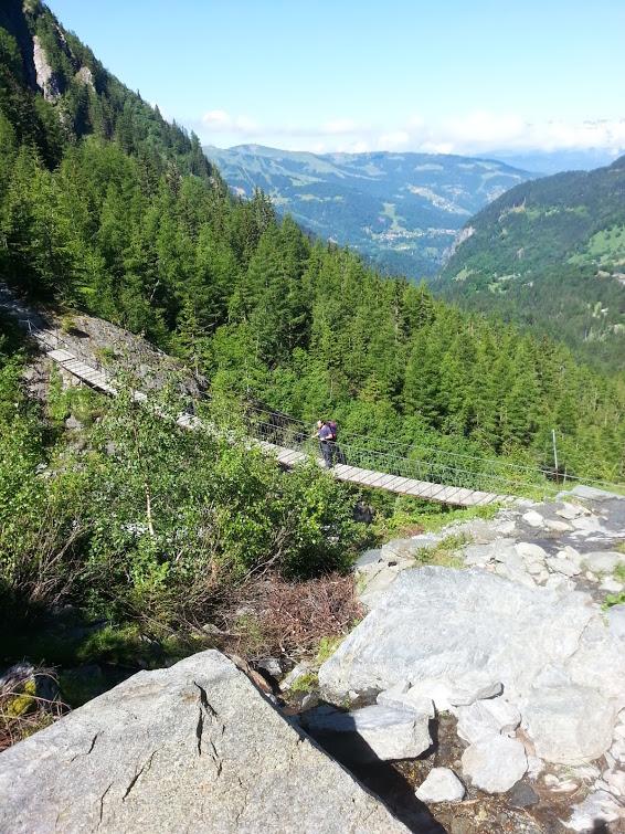 מה לקחת לטיול שטח טבעוני?